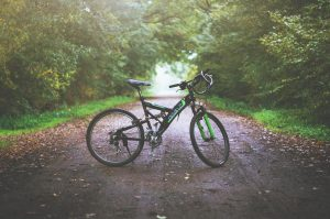 Rower górski: co warto wiedzieć?